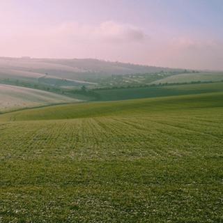 Встановлення меж земельної ділянки в натурі на місцевості